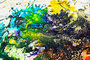 Sea Horse Art painting by caroline vis pollock style